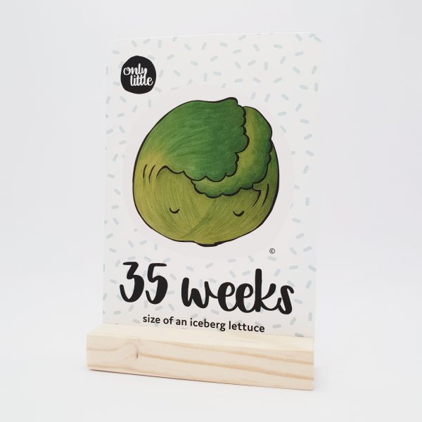 Pregnancy Milestone Cards With Wood Block Holder - Only Little