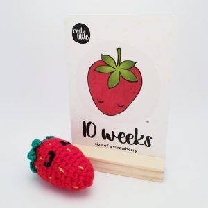 Crochet Strawberry - Only Little